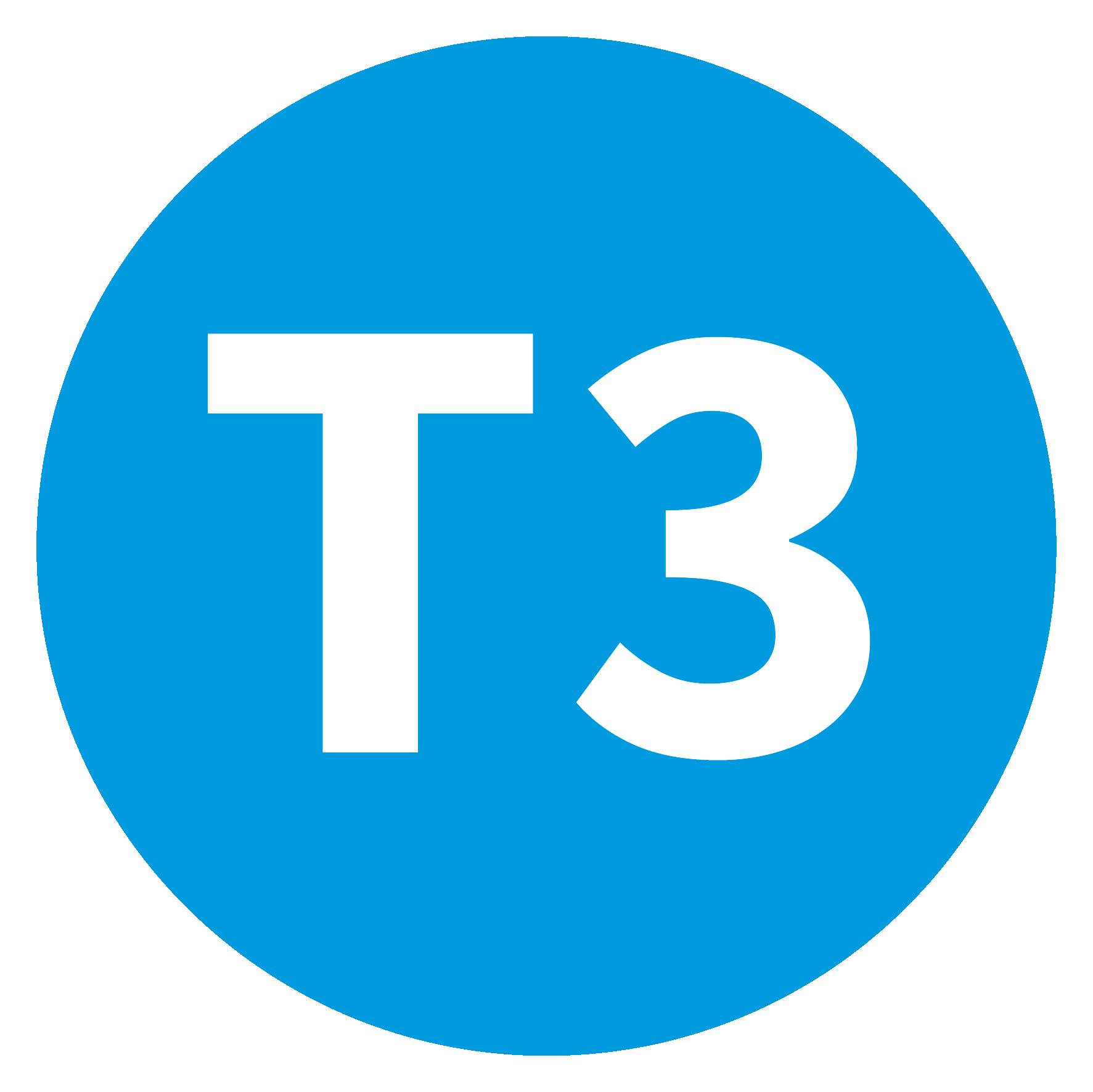 Ligne T3