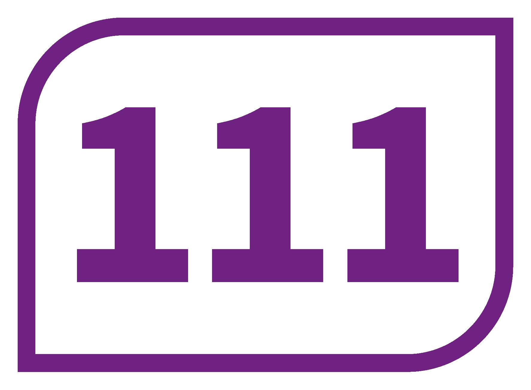 Ligne 111